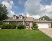 7261 Fish Farm Road, Palmetto image