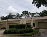 3190 Eagles Landing Circle W, Clearwater image