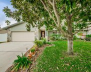 1001 Cardigan Lane, Palm Harbor image