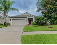 19521 Sunset Bay Drive, Land O Lakes image
