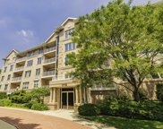 1715 Pavilion Way Unit 301, Park Ridge image
