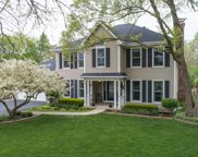 1045 Forest View Court, Naperville image