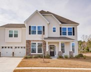 9746 Table Mountain Lane, Ladson image