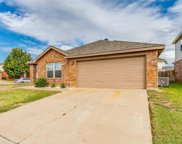 10809 Deer Trail, Fort Worth image