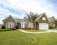 3622  Golden Cascade Lane, Indian Land image