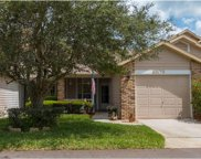 6509 Thicket Trail, New Port Richey image