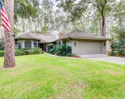 3 King Rail Lane, Hilton Head Island image