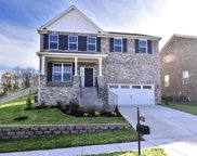 8501 Beautiful Valley Drive, Nashville image