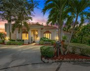 950 Southern Pine Court Ne, St Petersburg image