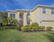 538 Harbor Grove Circle, Safety Harbor image