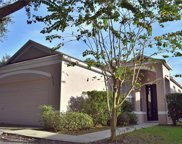 6205 Kiteridge Drive, Lithia image