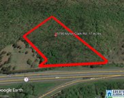 5790 Myron Clark Rd Unit 17 acres, Mccalla image