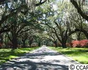 Lot A Tuckers Road, Pawleys Island image