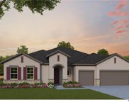 13308 Highland Woods Drive, Clermont image