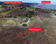 3350 Vineyard Court Unit Lot 8, Petoskey image