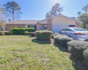 282 Wellington Drive, Palm Coast image