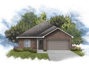 11145 Coral Delight Ave, Gonzales image