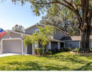 11504 Country Oaks Drive, Tampa image